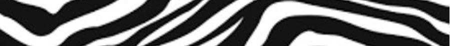 zebre bande